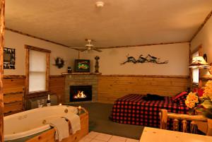 Hot Springs Cabin at Meadowbrook Resort & DellsPackages.com in Wisconsin Dells